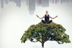 bill gates, egészség, hatékonyságnövelés, hobbi, kikapcsolódás, mark zuckerberg, meditáció, relaxáció, szabadidő, walt disney