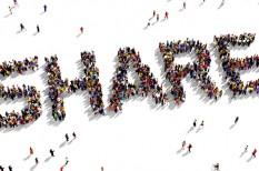 felvidéki, kistermelők, online piactér, piacesprofit, piacesprofit.hu, sharing economy
