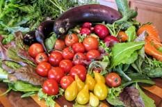 egészséges életmód, egészséges táplálkozás, élelmiszerpiac, étrend, gyümölcs, gyümölcsszezon, zöldség