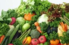 egészséges táplálkozás, élelmiszeripar, fenntarthatóság, fogyasztói szokások