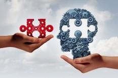 induló vállalkozások, mentorálás