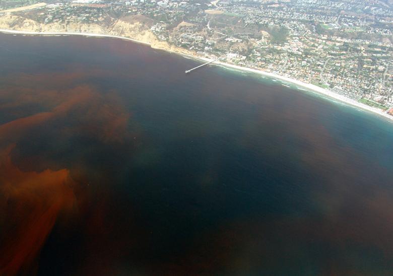 Halálzóna. Ez éppen San Diego közelében van, a Csendes-óceán partján. (fotó: wikipedia)