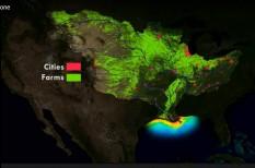 agrár, etanol, externália, halálzóna, környezetszennyezés, mexikói-öböl, mezőgazdaság, műtrágya, óceán, savasodás, savasodó tenger, tenger, vegyipar, víz