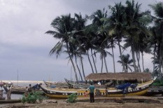 halász, halászat, halfogás, illegális halászat, környezetvédelem, tengeri élővilág