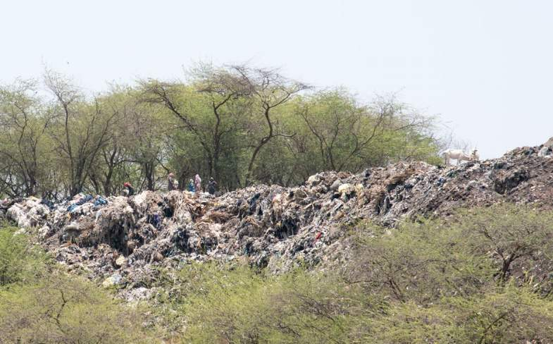 fotó: changingmarkets.org
