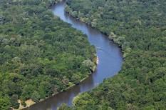 duna, folyó, környezetszennyezés, környezetvédelem, víz, wwf