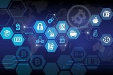 bitcoin, botnet, kiberbűnoző