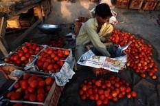 éhínség, élelmiszerpazarlás, fao, fenntartható fejlődés, save food