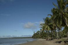 fao, google, környezetvédelem, szigetállamok, talajromlás
