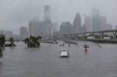 áradás, Houston, hurrikán, károk, tragédia