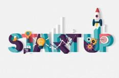 befektetés, hvca, kockázati tőke, startup