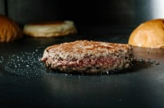 befektetés, hamburger, startup, usa, üzleti siker