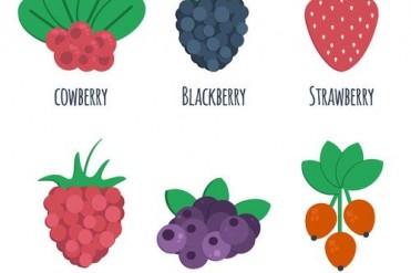 eper, gyümölcstermesztés, klímaváltozás, málna, növénytermesztés, ültetvények