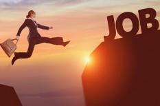 boldogság, egészséges munkahely, karrier, karrierváltás, motiváció, önéletrajz, tanulás