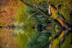 folyó, foszfor, műtrágya, természetvédelem, vízszennyezés