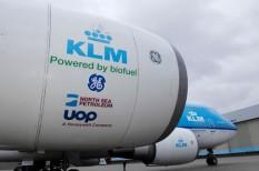 bioüzemanyag, energetika, IATA, károsanyag, repülés
