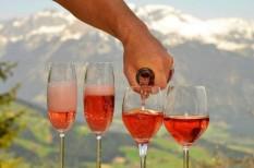 bejelentés, bor, borászok