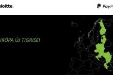 digitalizáció, e-kereskedelem, európai unió, fejlődés, kkv, munkaerő, munkahely