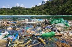 eu, hal, korlátozás, műanyag, szennyezés, tenger