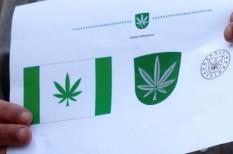 észtország, kannabisz, kender, marihuána