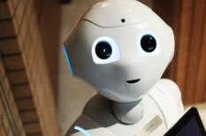 képzés, MI, oktatás, robot