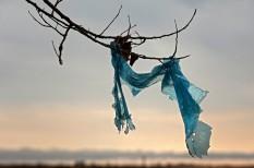 betilt, betiltás, csendes-óceán, hulladék, ikea, környezetszennyezés, mikroplasztik, műanyag, óceán, plasztik, szemétsziget, tenger, unilever