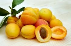 fagykár, gyümölcstermesztés, mezőgazdaság