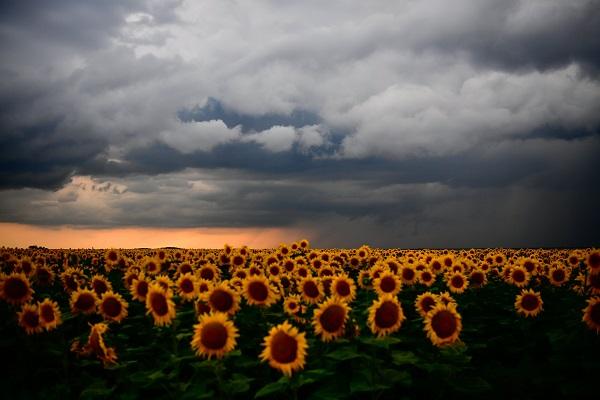 Viharfelhõk Debrecen közelében Kép: MTI Fotó: Czeglédi Zsolt