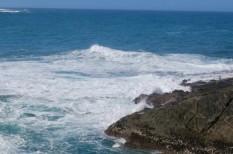 hőhullám, hőség, klímaváltozás, melegedés, óceán, tengeri állatok, veszély