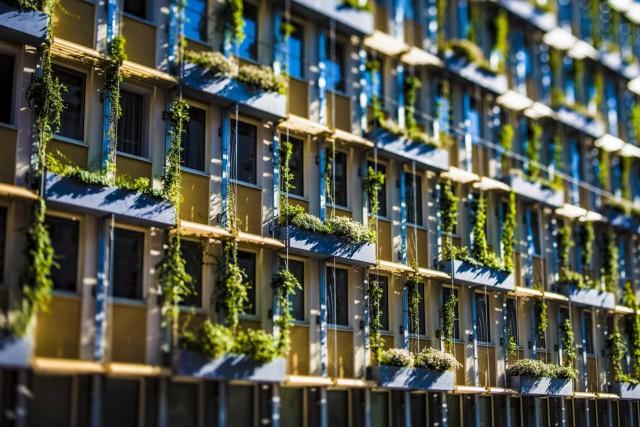 Zöldhomlokzat a Grabnergasseban © Wiener Wasser / Novotny