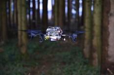 drón, fejlesztés, idegpályák, szuperdrón, tájékozódás