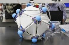 fejlesztés, feladat, kísérlet, robot