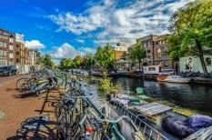 biztonság, edzés, hollandia, kerékpározás, közlekedés, utak