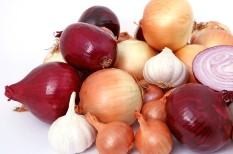 export, fokhagyma, hagyma, időjárás, import, termés, vöröshagyma