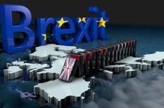 brexit, cégek, export, gazdaság, hatás, import, működés