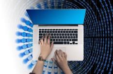 buktatók, cégindítás, digitalizáció, nehézségek