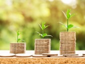 bankvilág, digitalizáció, fenntarthatóság, fintech, zöld kötvény