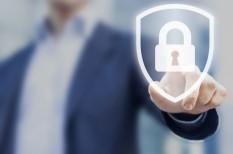 adatvédelem, it a cégben, it-biztonság, kiberbőnözés, kkv informatika