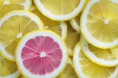 citrom, élelmiszer, ellenőrzés, nébih, vizsgálat