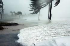 foygasztói szokások, globális felmelegedés, klímaváltozás
