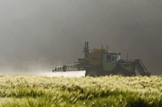 egészségkárosítás, hamisítás, növényvédőszer