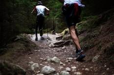 egészség, felmérés, mozgás, sport