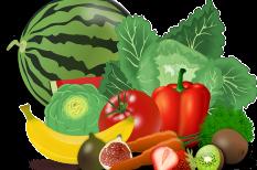 mezőgazdaság, támogatás, termelés