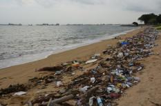 csomagolás, gyártás, hulladék, italos palack, környezetszennyezés, mikroplasztik, műanyag, óceán, olaj, párt, pet, plasztik, szemét, sziget, tenger, természet, tömegtermelés, újrafeldolgozás, újrahasznosítás