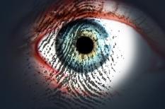 biometrikus azonosítás, erkölcsi bizonyítvány, gdpr, munkajog, okirat, szabályozás, szigorítás, változás