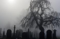 temetkezés