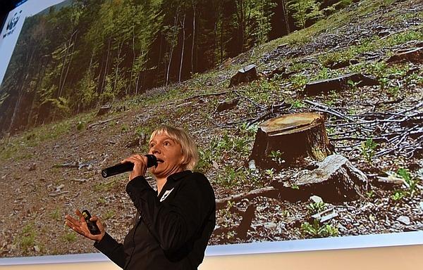 Sipos Katalin, a WWF Magyaroszág igazgatójának előadásában az elhíresült erdőírtásos fotóval.