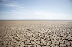 klímaváltozás, mezőgazdaság, otp agrár